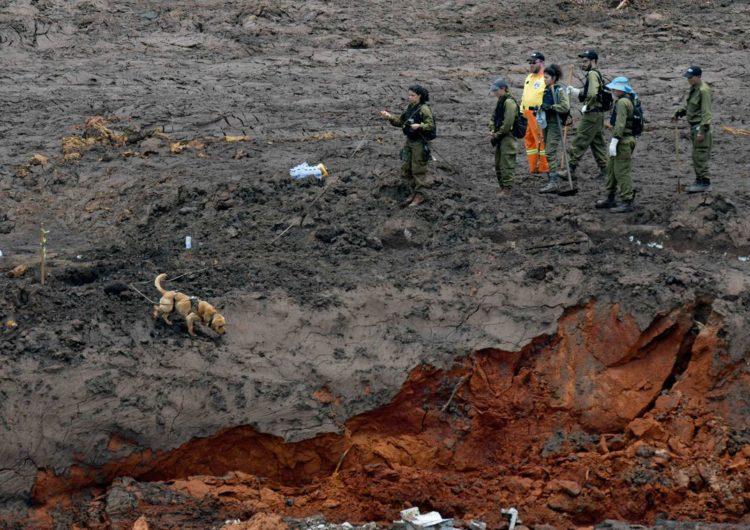 No 7º dia após desastre, esperança diminui e número e vítimas aumenta